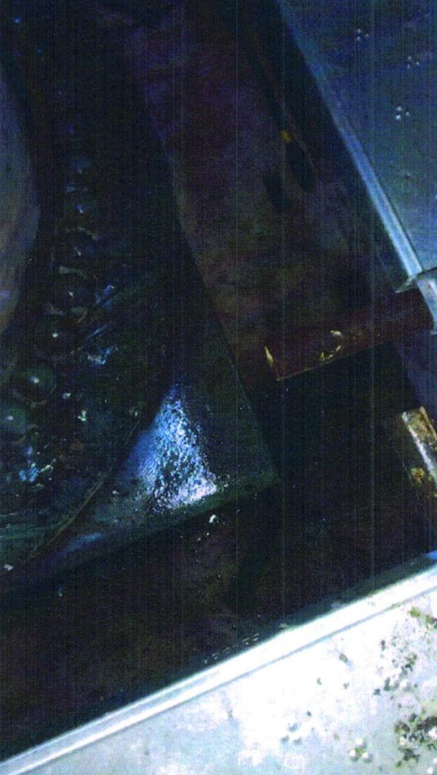 particolare della corrosione delle leghe metalliche e dei depositi da deiazioni animali e particellato